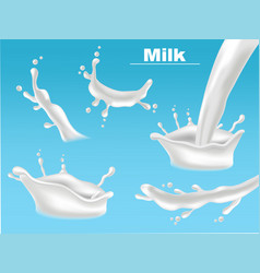 milk splash set collection realistic fresh vector image