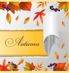 torn paper autumn leaves and text autumn vector image