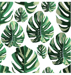 tropical monstera leaves seamless pattern white vector image