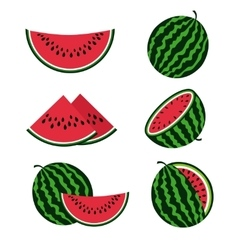Watermelons and watermelon slices flat cartoon vector