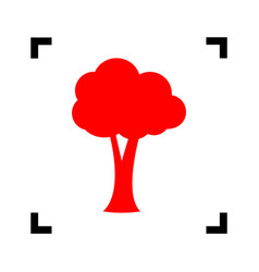 tree sign red icon inside vector image