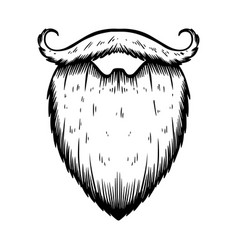 beard in engraving style on white background vector image