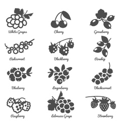 Berries Flat Icons Set vector image
