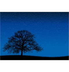 black silhouette of old tree at night scene vector image