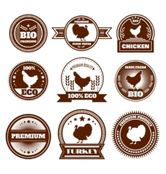 Eco farm chicken turkey emblems vector image