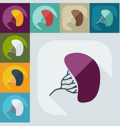 Flat modern design with shadow liver medical icon vector