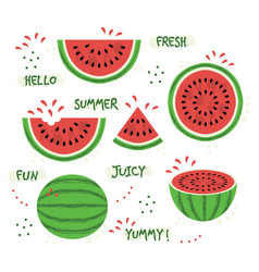 Green and red whole and sliced watermelon set vector