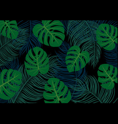 palm and monstera deliciosa leaves vector image