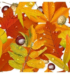 Seamless pattern from autumn leaves on the white vector