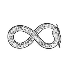 snake infinity sign sketch vector image