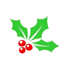 Holly berry color simple icon vector image vector image