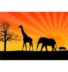 black silhouette of african wild animals vector image vector image