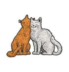 cat love couple hug sketch vector image