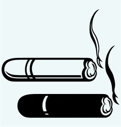 Cigarette burns havana cigar burned vector image