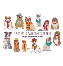 Cute cats and dogs fashion hipster isolated pets vector