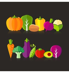 Organic farm vegetables on black background vector image