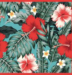 tropical leaves hibiscus plumeria flowers vector image