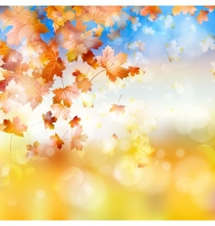Autumn background with maple leaves eps 10 vector