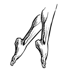 legs on pointe tiptoe vector image