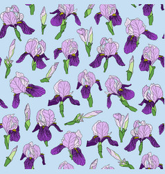 seamless pattern of iris flowers in a linear style vector image
