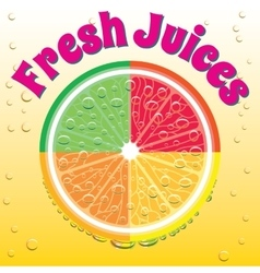 Banner for juice grapefruit orange lime lemon vector