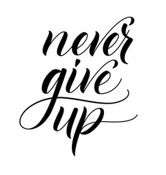 Brush calligraphy never give up vector