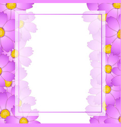 Pink cosmos flower banner card border vector