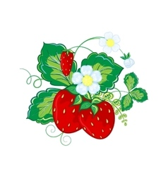 Strawberries hand draw cartoon vector