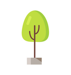 green tree in pot icon vector image vector image