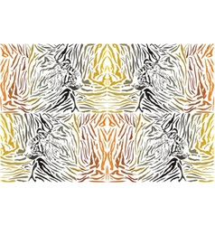 Pattern background tiger with head vector image vector image
