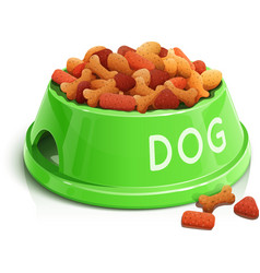 Bowl with dog feed vector