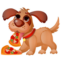 cute animated dog eating pizza isolated on white vector image
