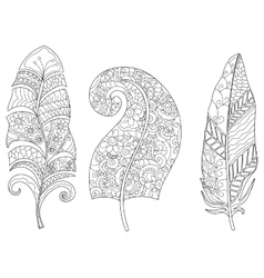 Three feathers coloring for adults vector