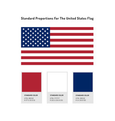 United states flag icon usa flag standard vector