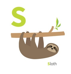 Letter S Sloth Zoo alphabet English abc with cute vector image
