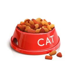 bowl with cat feed vector image
