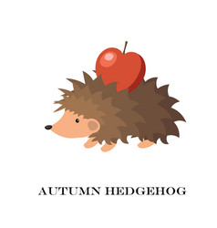 cute hedgehog isolated on vector image vector image