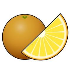 Orange fruit isolated on white background vector image