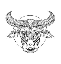 Buffalo head coloring book vector