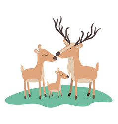 cartoon deer couple and calf over grass in vector image