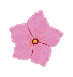 Flower geranium florish image vector