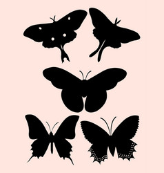 flying butterfly silhouette vector image