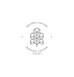 Organic cotton logo template vector