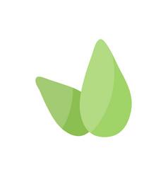 tea leaves flat icon vector image