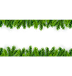 white background with christmas tree branches vector image