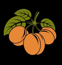 Vegetarian organic food simple three ripe vector