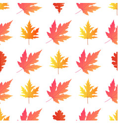 autumn background yellowed maple leaves vector image
