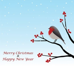 Christmas Greeting With Red Robin On Branch vector image