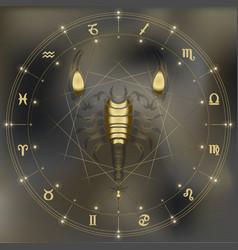 Golden scorpion zodiac Scorpio sign vector image
