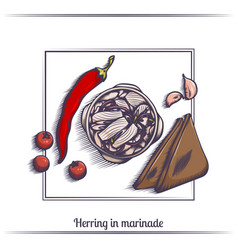 herring in marinade and with bread vector image